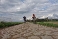 Road to Roubaix - Rod H